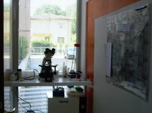 Laboratorio del Centro Olikos