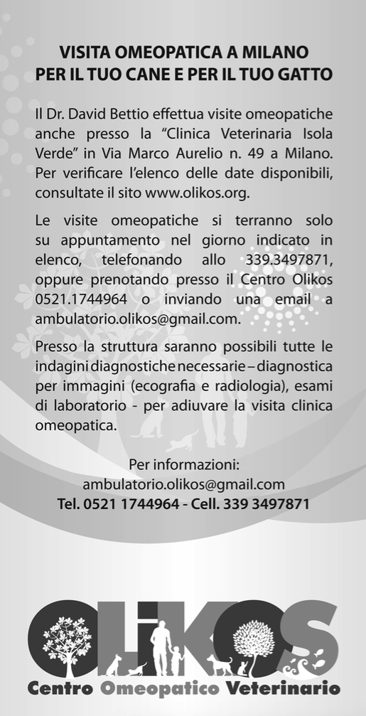 visite milano flyer