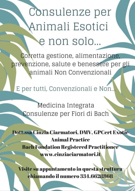consulenze-per-animali-esotici