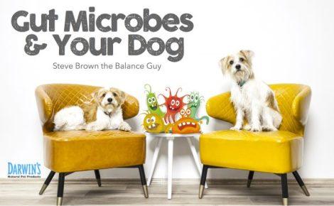gut-microbes-600x371