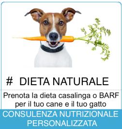 pulsante dieta 2018_def