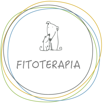 PULSANTE FITOTERAPIA_NEW2019